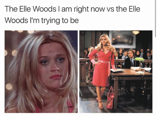 the-elle-woods-l-am-right-now-vs-the-elle-20269358